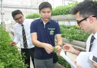 Field Trip to Kok Fah Technology Farm 15 Feb 2017